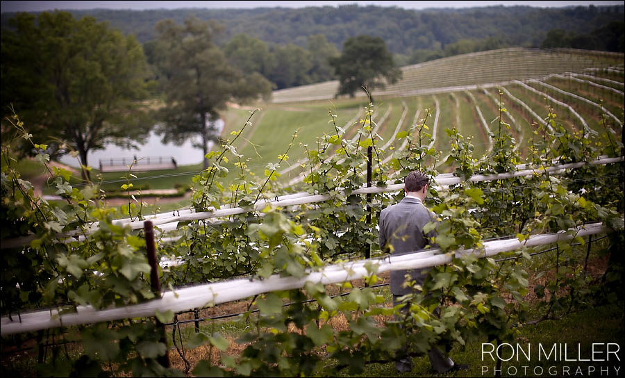 Winery Wedding Photographer0081