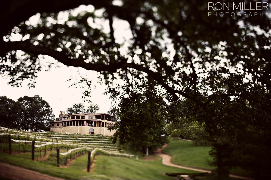 Winery Wedding Photographer0083