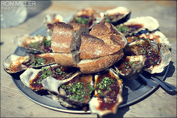 bbq oysters tomales bay